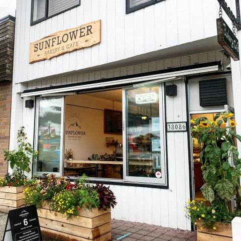 Sunflower Bakery Squamish with vegan donuts